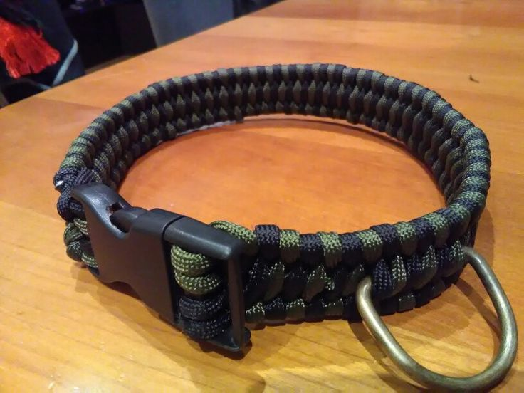 Homemade paracord dog collar