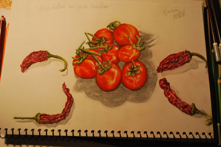 Illustration of Dried Chillies and Fresh Tomatoes. ©Æ Sastrias 2014