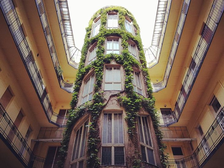 Isn'it beautiful? Courtyard in Liszt Ferenc Square, Budapest