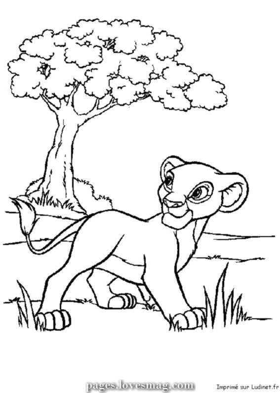 Coloring Pages Simba Recent Nala Mop The Lion King Pinterest From