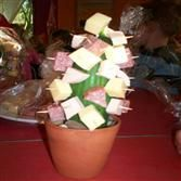 Cactus gezond