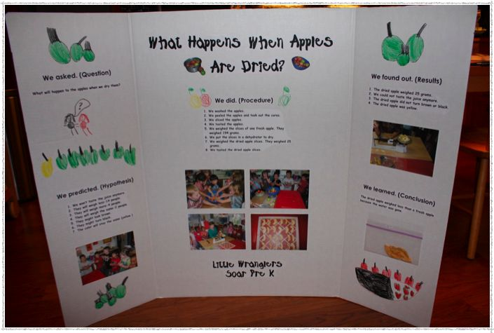 simple science fair projects Looking for elementary science projects science4us provides free science projects as part of the many resources available on our site make sure you try our free demo activities to see our program in action.