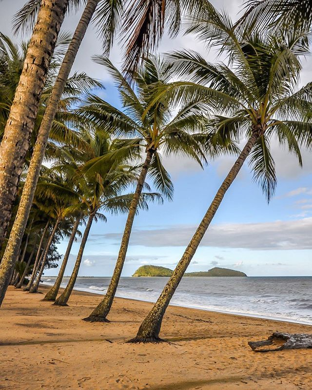 Desert Island Beach: Palm Cove Is A Jewel In The @tropicalnorthqueensland Crown