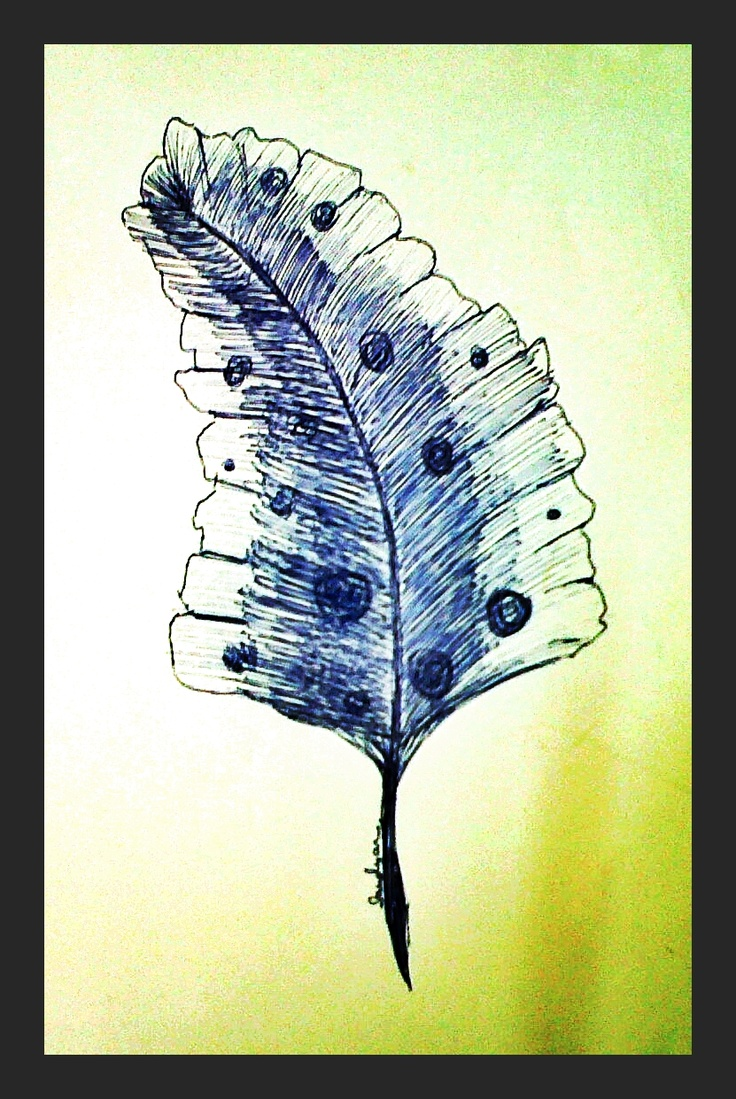 Quill (ink) - 2012