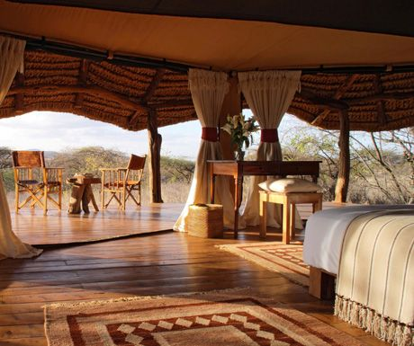 Are you searching for a safari holiday that provides an African adventure complete with stays at accommodations visited by some of history's greatest minds, intrepid explorers and royalty? Then the following luxury lodges in Kenya will make your wildest dreams come true! Read on for our five most luxurious lodges to be found in the …