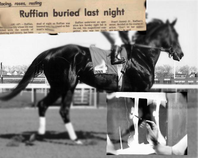Ruffian Rennpferd