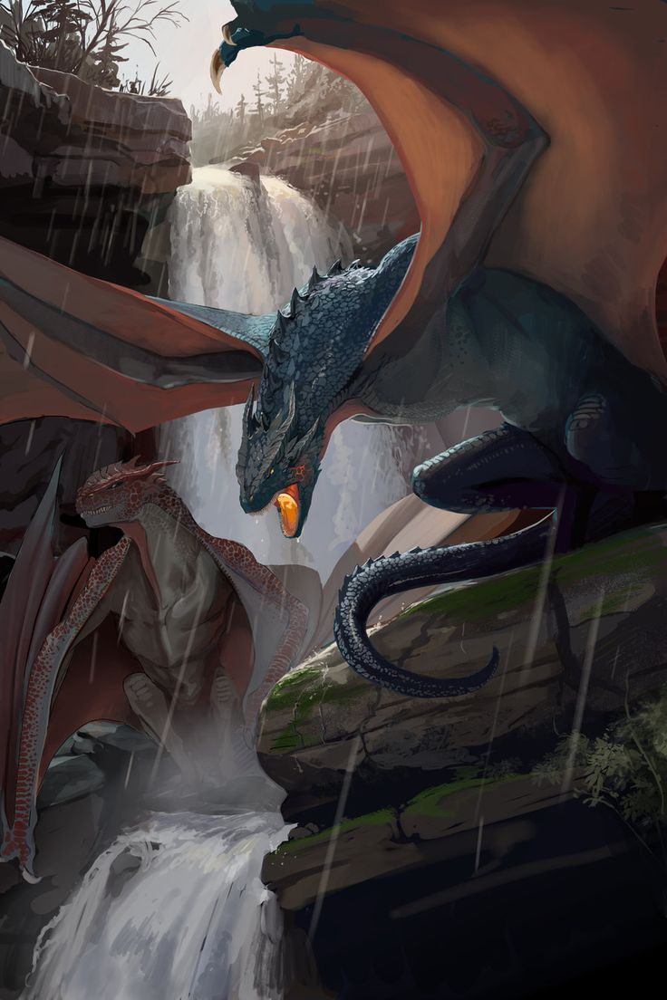 http://themichaelmacrae.deviantart.com/art/Dragons-464546984