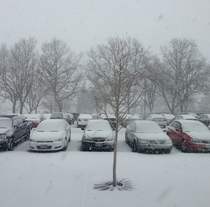 Snow in Tanner Building parking lot: