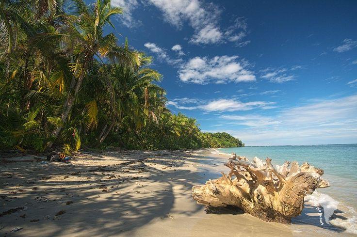 Une plage comme ça, ça donne envie de marcher pendant des heures