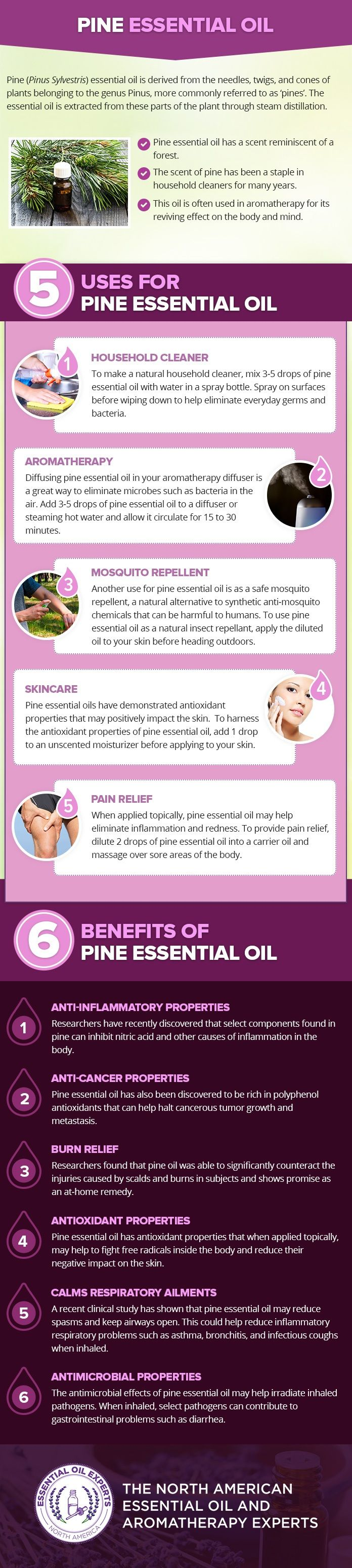 Pine essential oil uses and benefits