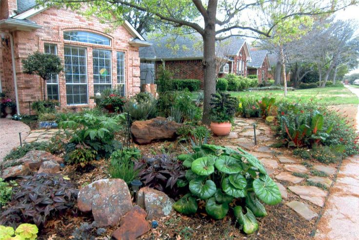 Texas xeriscape designs advocate magazine show off your for Ideas for front yard plants