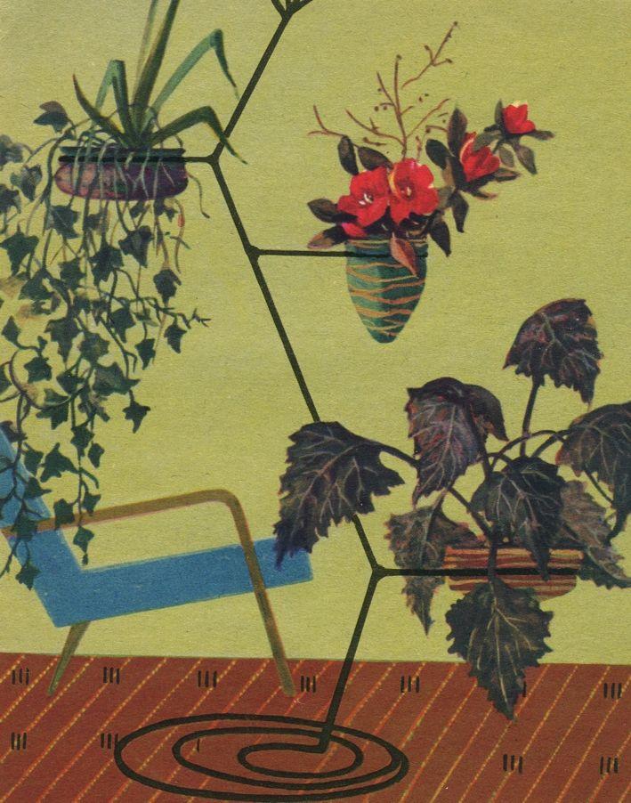 Что такое гидропоника, гидропоника и цветочные культурыы, растения выращенные без почвы, растения выращенные на питательных эксатах, керамзитные культуры, опилки и камни, гравий вместо почвы, нужна ли почва растениям, питательные среды для растений, выращивание растений воздушнокапельным путем