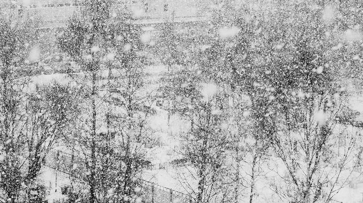 Russia, Kolpino, spring has come ...