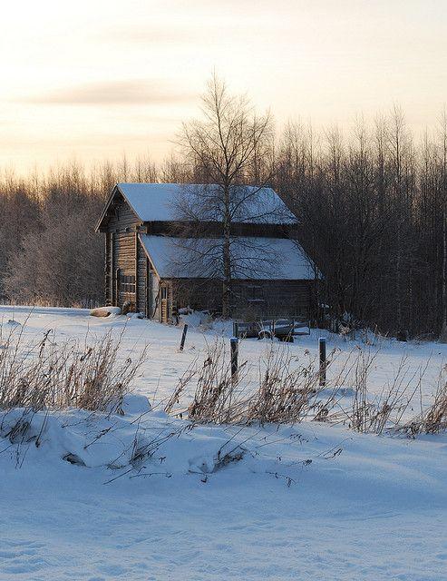 Winter walk around Selkie, North Karelia, Finland   Flickr - Photo Sharing!