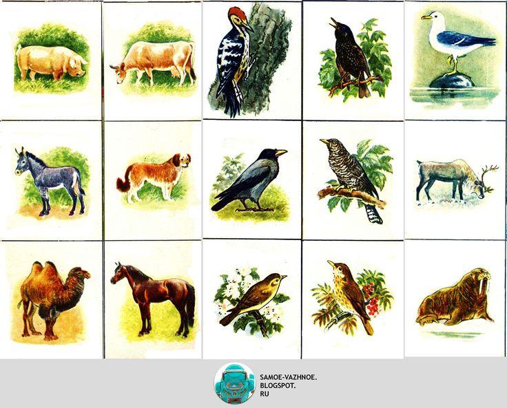 Лото в Мире животных СССР на 4 четырёх языках советское старое из детства сканы версия для печати скачать распечатать