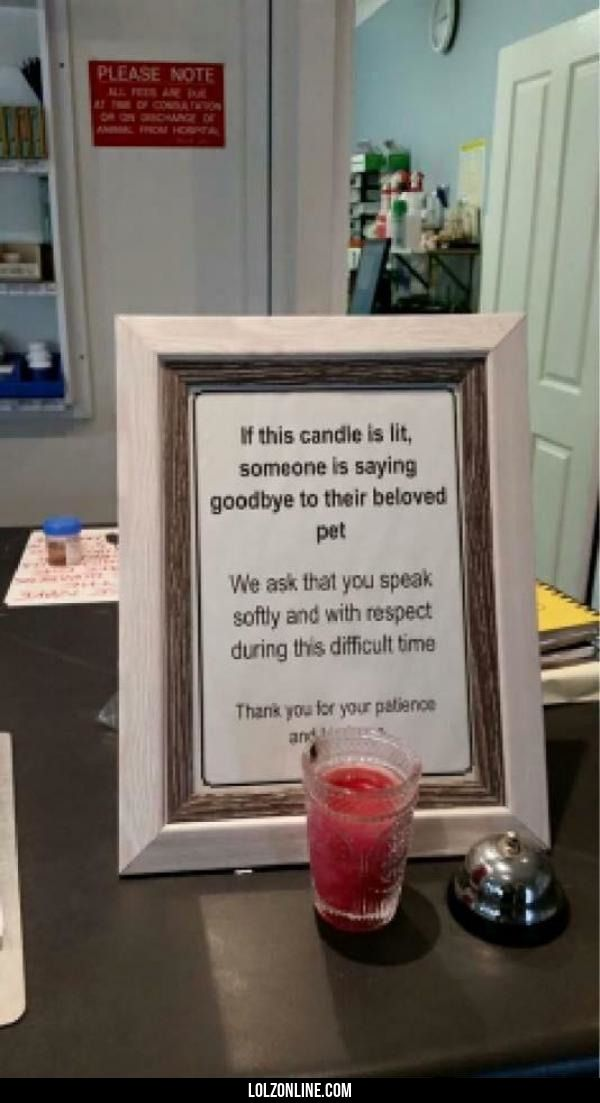 Thoughtful notice at a local vet.#funny #lol #lolzonline