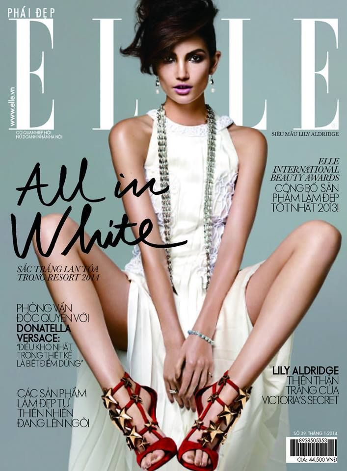 cool Elle Magazine Vietnam January 2014 | Lily Aldridge  [Cover]
