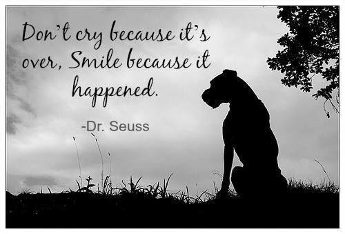 Love Dr Seuss quotes