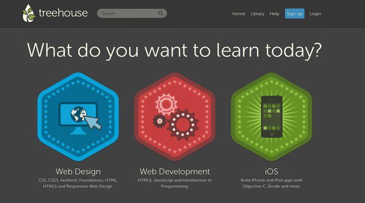 learn website development
