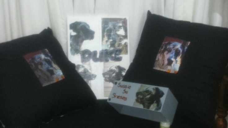 Canvas, pillows and tissue box