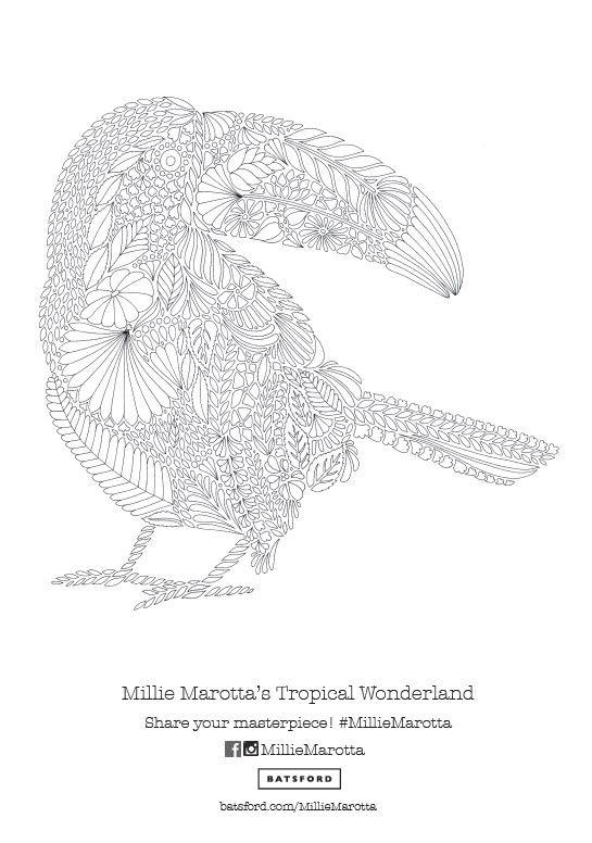 Toucan Pattern Free Download