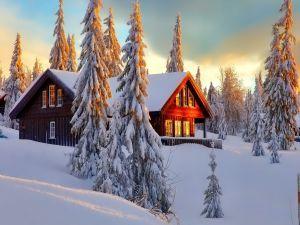 Hermosa caba a entre pinos cubiertos de nieve paisajes nevados pinterest - Cabana invierno ...