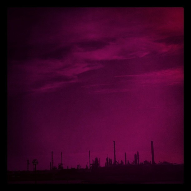 Pink Marghera silhouette