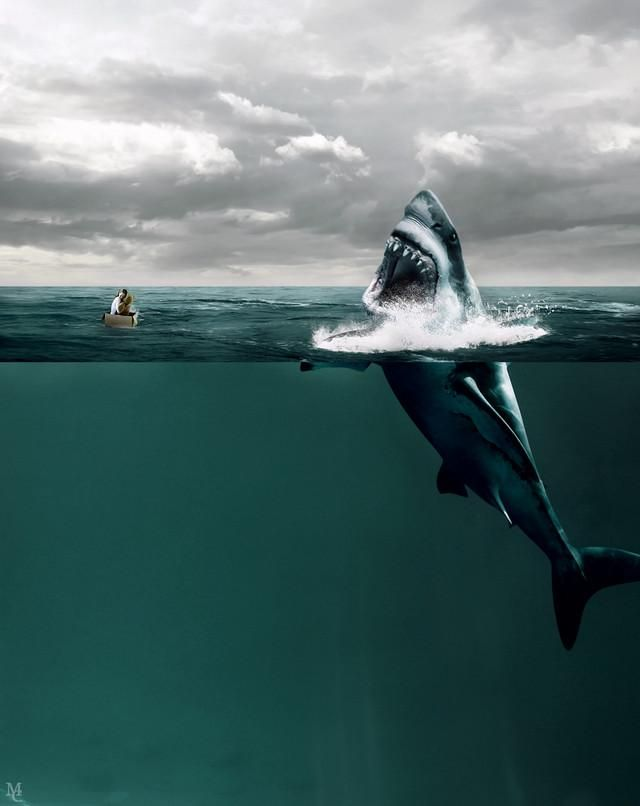 this is how i feel when i drive. im the shark and everone else is screwweddd
