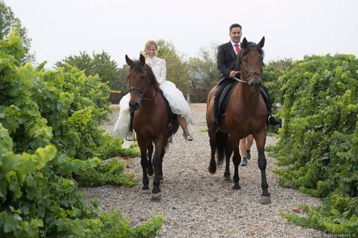 se casaron el pasado agosto. Él visitió su dia con Trajes Señor  #bride #groom #wedding #weddings #bodas #novio #traje #boda #suits #suitup #suit #bridestyle #groomstyle 📷 Wolf fotógrafos de bodas