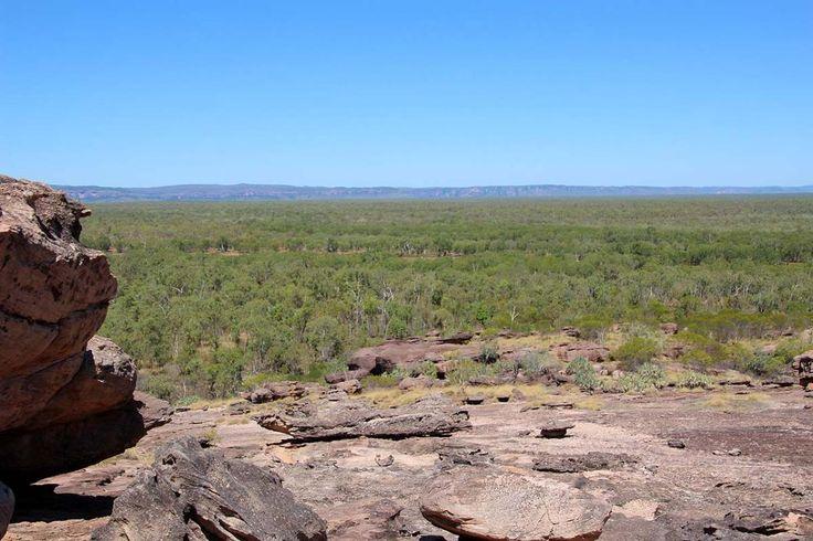 The views and rock art are stunning at Nawurlandja Lookout Kakadu NP,  NT. Now available on RvTrips. See more at: www.rvtrips.com.au/nt/jabiru/nawurlandja-lookout/