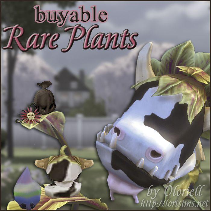 Buyable Rare Plants for TS4