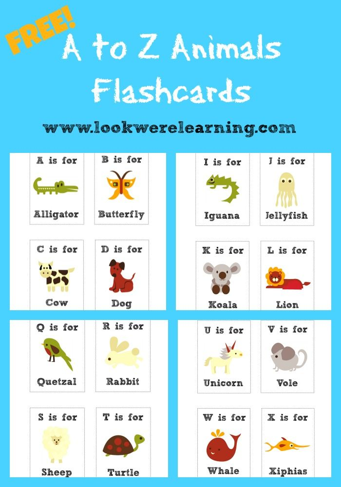 68 best free printable flashcards images on pinterest printable free printable flashcards alphabet animals fandeluxe Choice Image