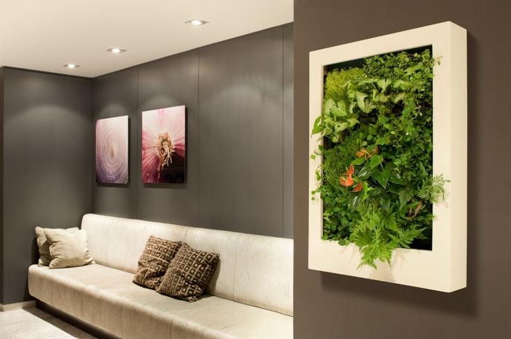 """""""Los lienzos naturados"""" Son jardines verticales elaborados a escala, diseñados individualmente para decorar las paredes  y que, además, sirven para aportar oxígeno al ambiente, acondicionar la temperatura, y como está demostrado, producir en las personas un efecto anímico positivo."""