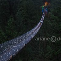 Canyon Lights at Capilano Suspension Bridge | Vancouverscape