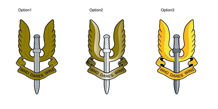 3 versions of the SAS badge vectorized.