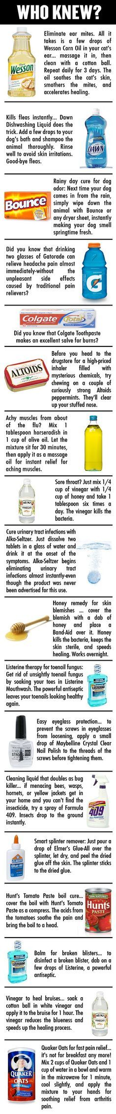 I Did Not Know That! Eliminating Ear Mites, Skin Blemishes, New Bug Killers, Pain Relief w/out Asprin & more..