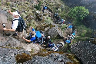 It is said that #KilimanjaroClimb will take you through all the geographical zones on earth. Know more @ https://www.northernmasailandsafaris.com/mountain-climbing/kilimanjaro-climbing/
