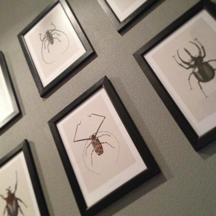 Bugs in frames