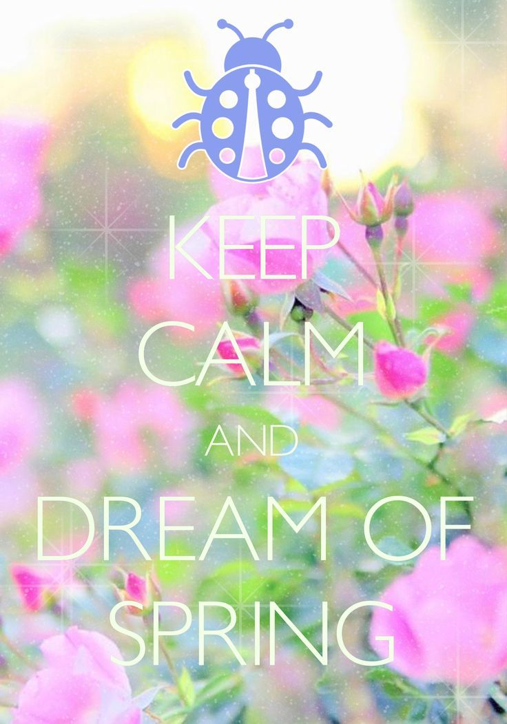keep calm and dream of spring / Created with Keep Calm and Carry On for iOS #keepcalm #spring