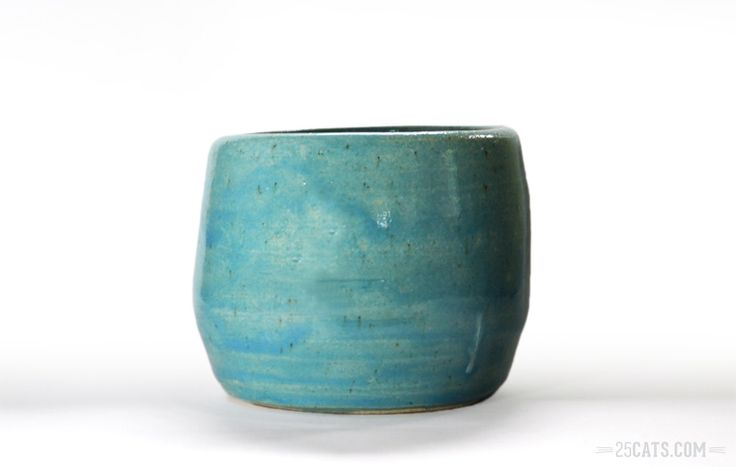 Lucky turquoise pot