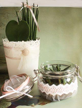 Piante Grasse In Vaso Di Vetro E In Vaso Di Latta Centrotavola