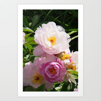 Rosé Peony Art Print by Andrea Fettweis - $14.98