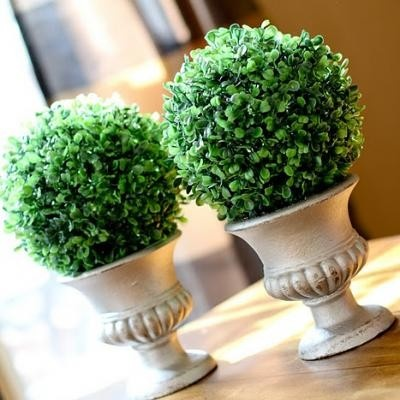 Ballard Designs knockoff topiaries...so cheap!