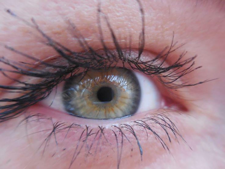 Eilin - right eye