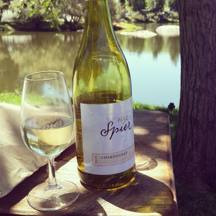 Picnic with the family while holiday in Cape Town : visit the Spier wine Estate South Africa. www.spierpicnics.co.za (Photograph: N.Martin)