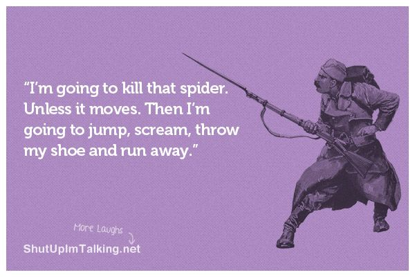 I'm going to kill that spider.: Gross Spiders, Quotes, Truth, Funny Stuff, Hate Spiders