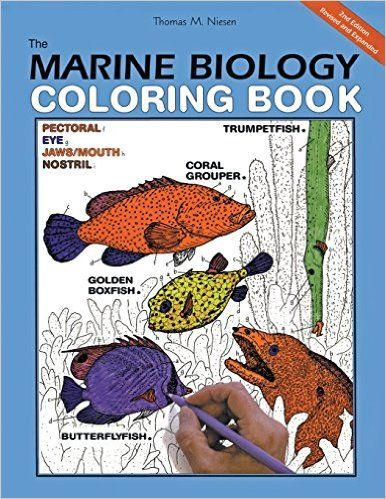 The Marine Biology Coloring Book Second Edition Thomas M Niesen 9780062737182