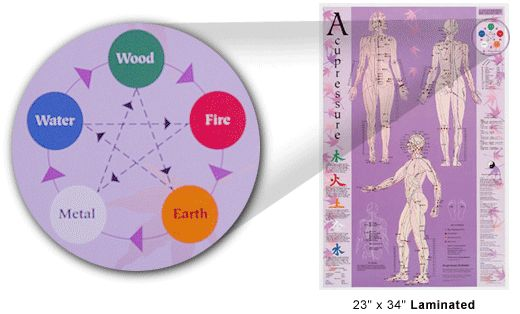 The Official Website for Acupressure. Charts for Acupuncture and Acupressure. Meridian Charts.