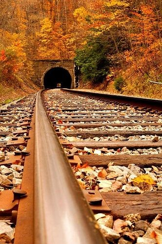 """""""If you do not see light at the end of the tunnel, consider it an opportunity to create an opening yourself, wherever you want."""" ~Ashton Kallarakkal. Photo by jagger1970/flickr: Old railroad tunnel"""