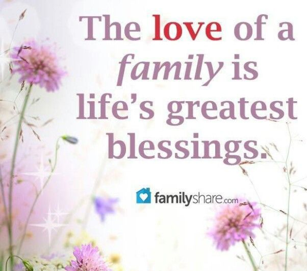 Family Quotes On Pinterest: Pinterest Family Quotes Love. QuotesGram